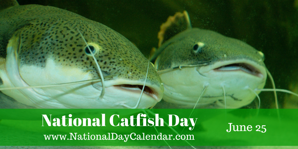 June 25, 2015 – NATIONAL STRAWBERRY PARFAIT DAY – NATIONAL CATFISH ...