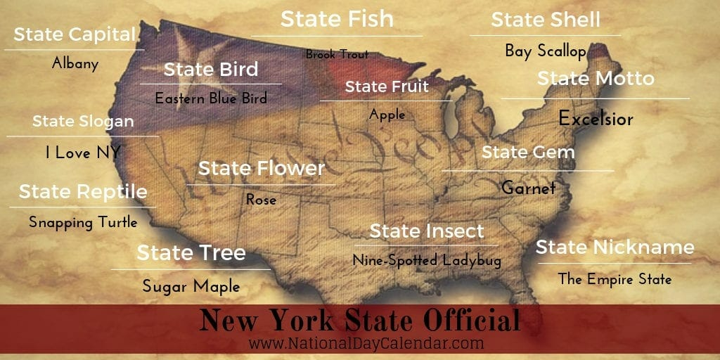New York Official