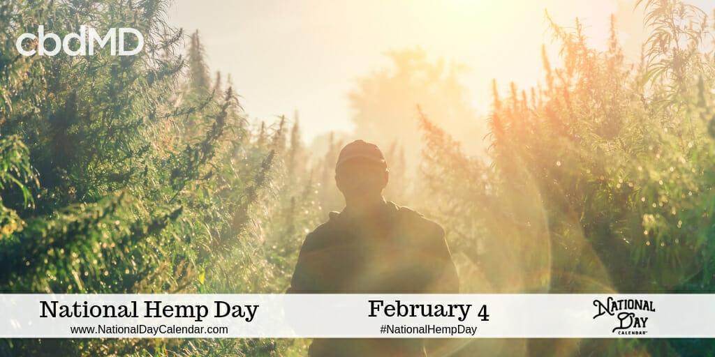 National Day Calendar 2019 February February 4, 2019   NATIONAL HEMP DAY   NATIONAL FOOTBALL HANGOVER