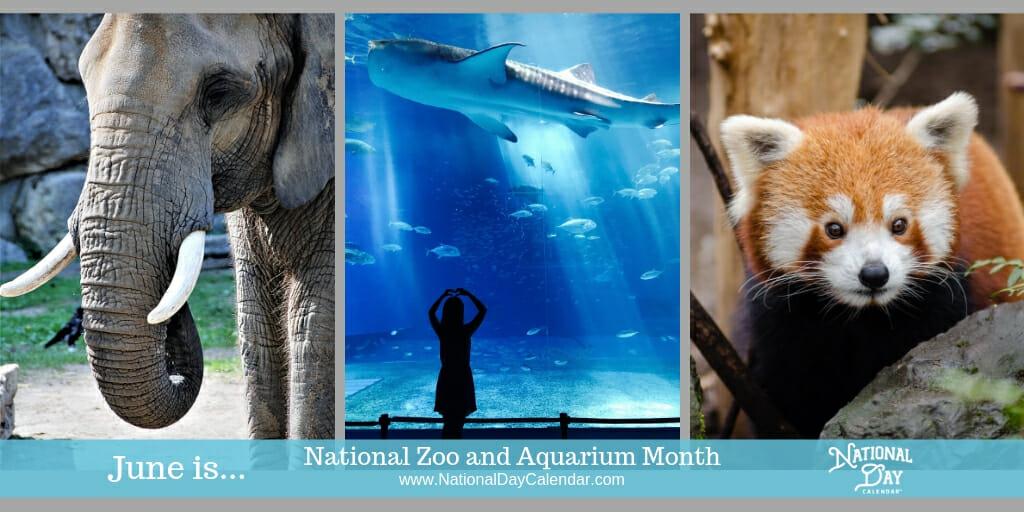 National Zoo and Aquarium Month - June