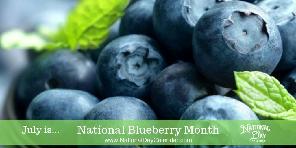 National Blueberry Month - July