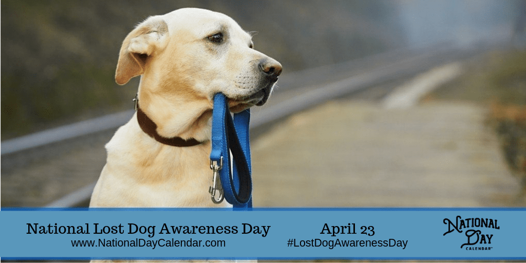 NATIONAL LOST DOG AWARENESS DAY – April 23