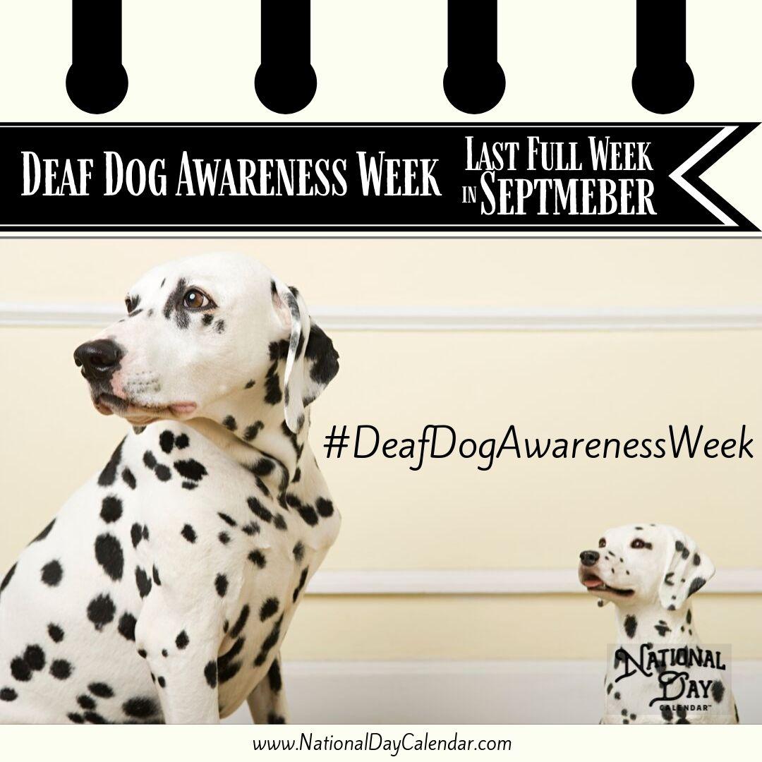 Deaf Dog Awareness Week - Last Full Week in September