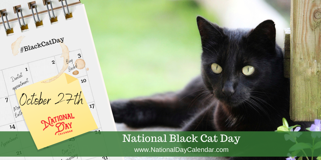 NATIONAL BLACK CAT DAY – October 27