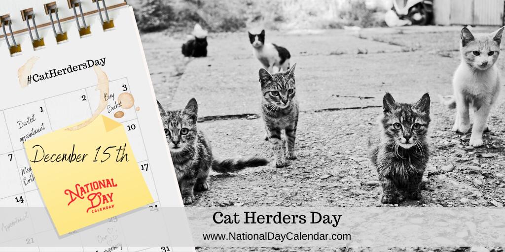 CAT HERDERS DAY – December 15