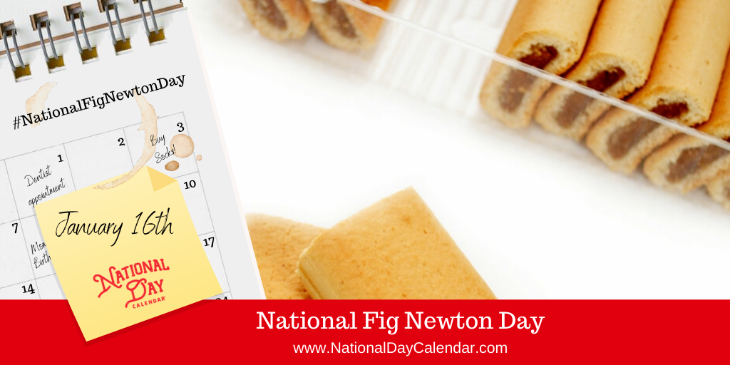 NATIONAL FIG NEWTON DAY – January 16