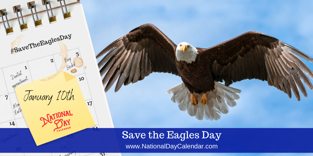 SAVE THE EAGLES DAY – January 10