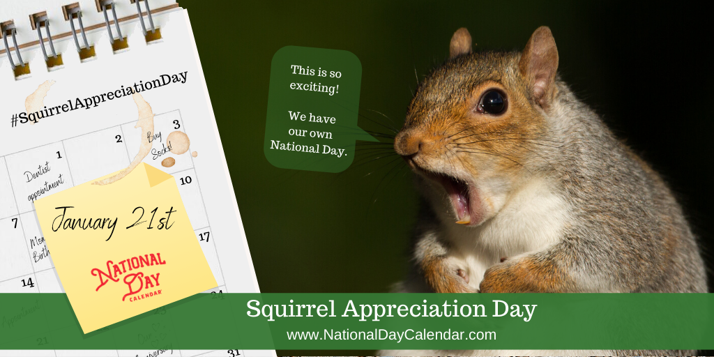 SQUIRREL APPRECIATION DAY – January 21