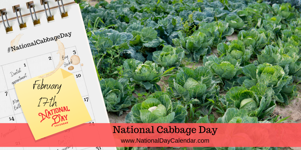 NATIONAL CABBAGE DAY – February 17