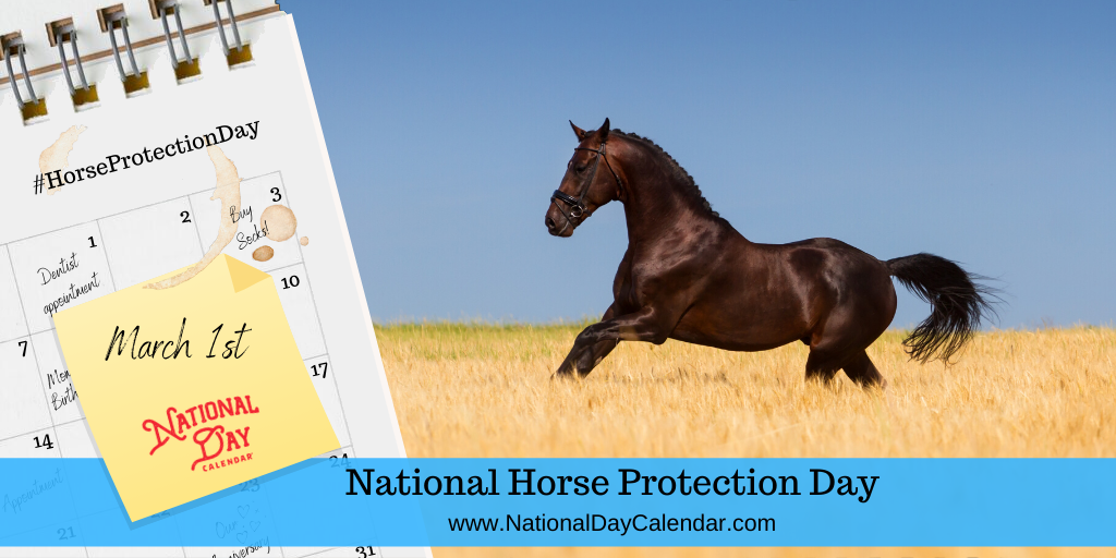 NATIONAL HORSE PROTECTION DAY – March 1