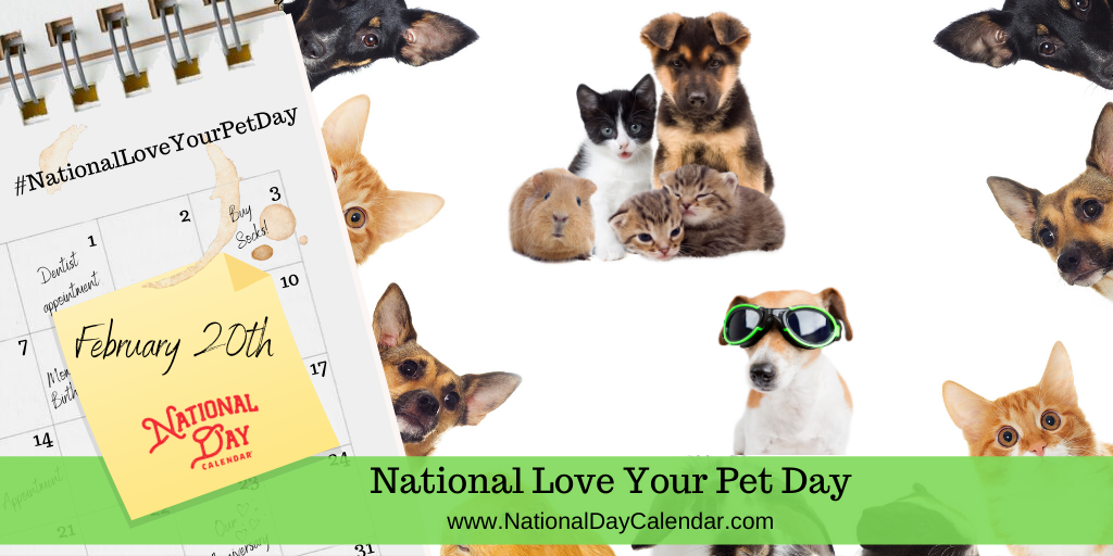 NATIONAL LOVE YOUR PET DAY – February 20