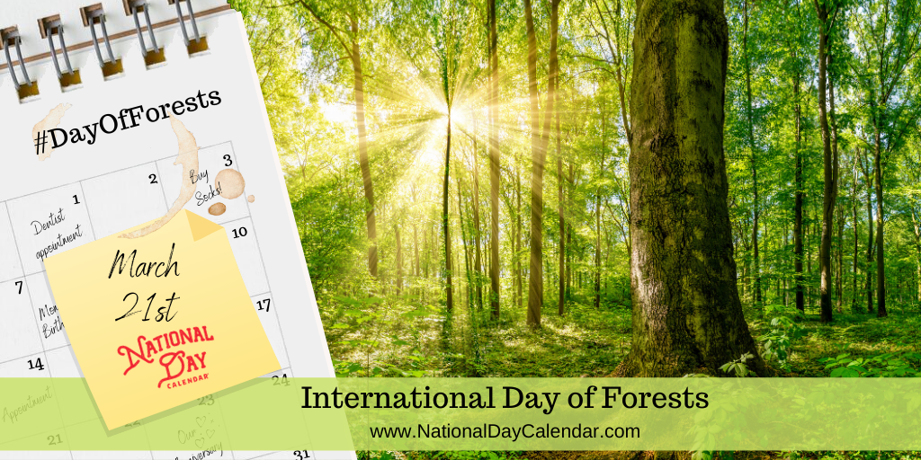 International Day of Forests - March 21