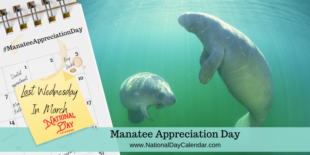 MANATEE APPRECIATION DAY – Last Wednesday in March