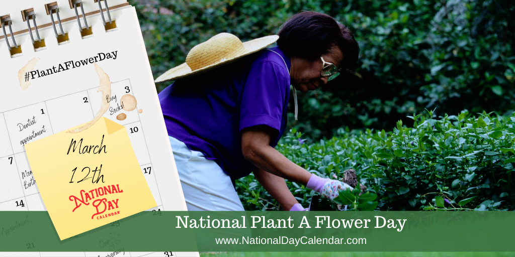 NATIONAL PLANT A FLOWER DAY - March 12