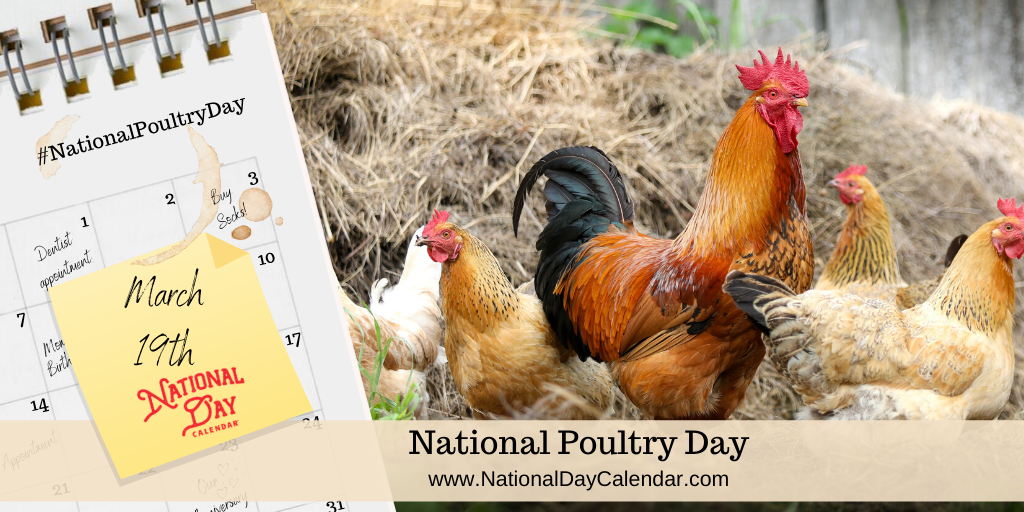 NATIONAL POULTRY DAY – March 19