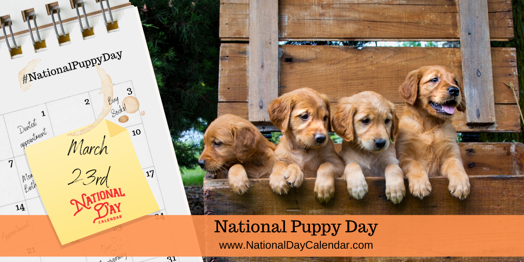 NATIONAL PUPPY DAY – March 23