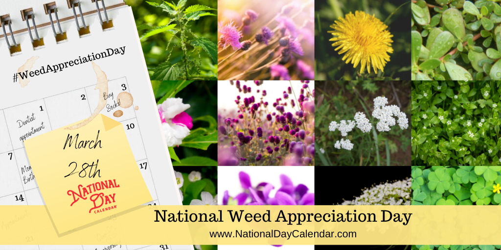 NATIONAL WEED APPRECIATION DAY – March 28