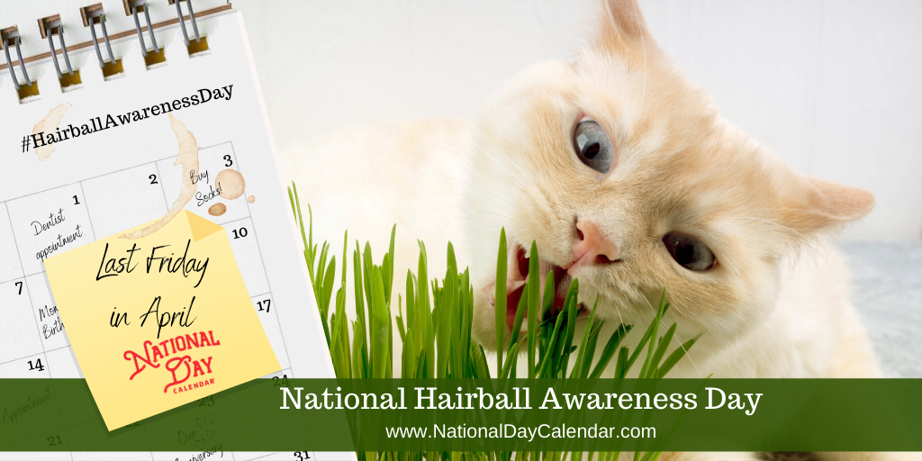 NATIONAL HAIRBALL AWARENESS DAY – Last Friday in April