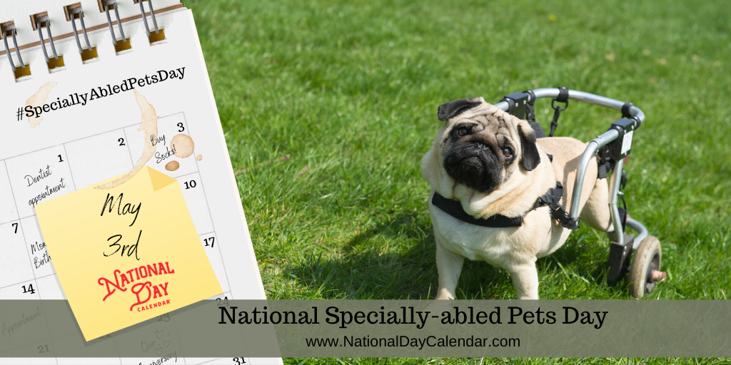NATIONAL SPECIALLY-ABLED PETS DAY – May 3