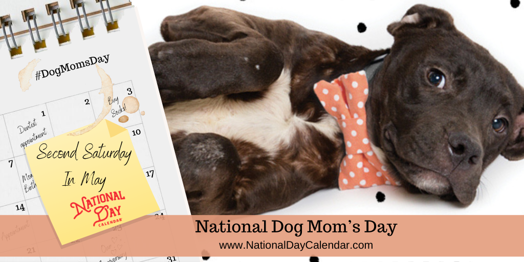 NATIONAL DOG MOM'S DAY – Second Saturday in May