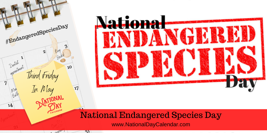 NATIONAL ENDANGERED SPECIES DAY – Third Friday in May