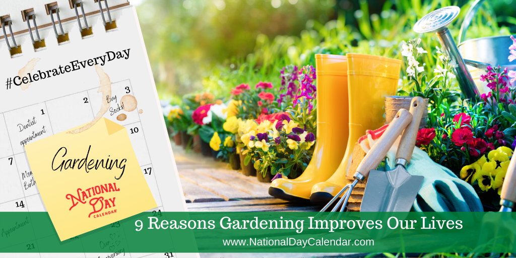 9 Reasons Gardening Improves Our Lives