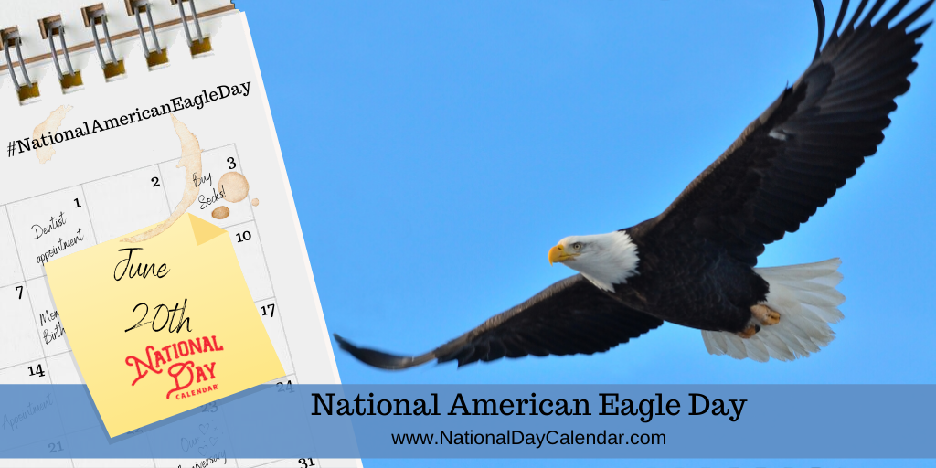 NATIONAL AMERICAN EAGLE DAY – June 20 (1)