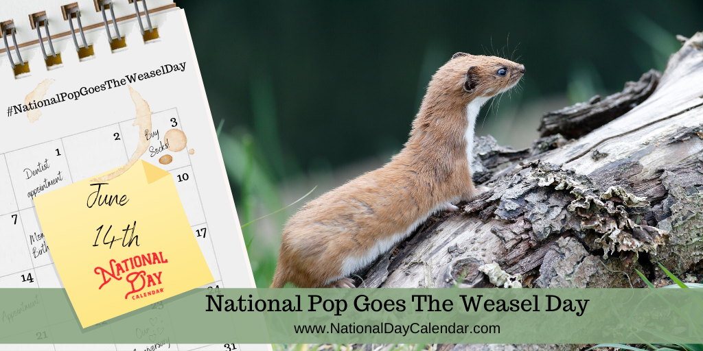 NATIONAL POP GOES THE WEASEL DAY - June 14