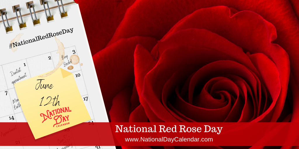 NATIONAL RED ROSE DAY – June 12