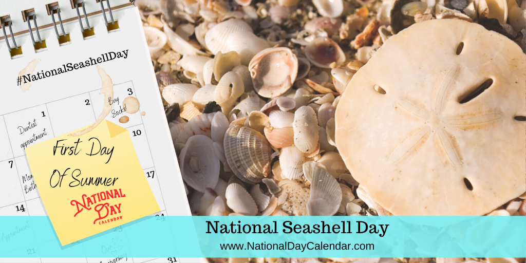 NATIONAL SEASHELL DAY – First Day of Summer