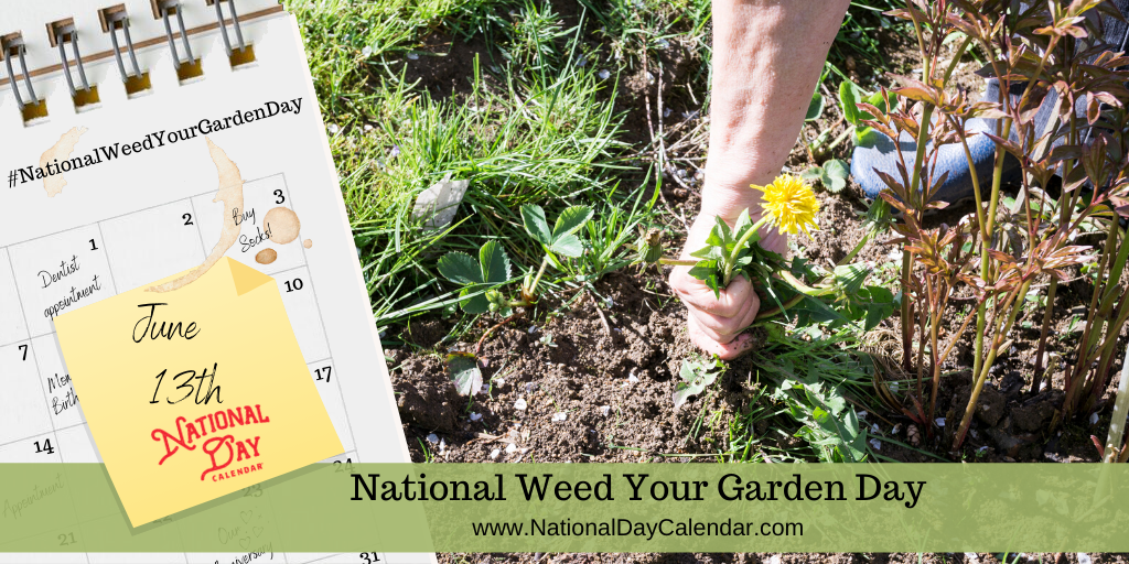NATIONAL WEED YOUR GARDEN DAY – June 13