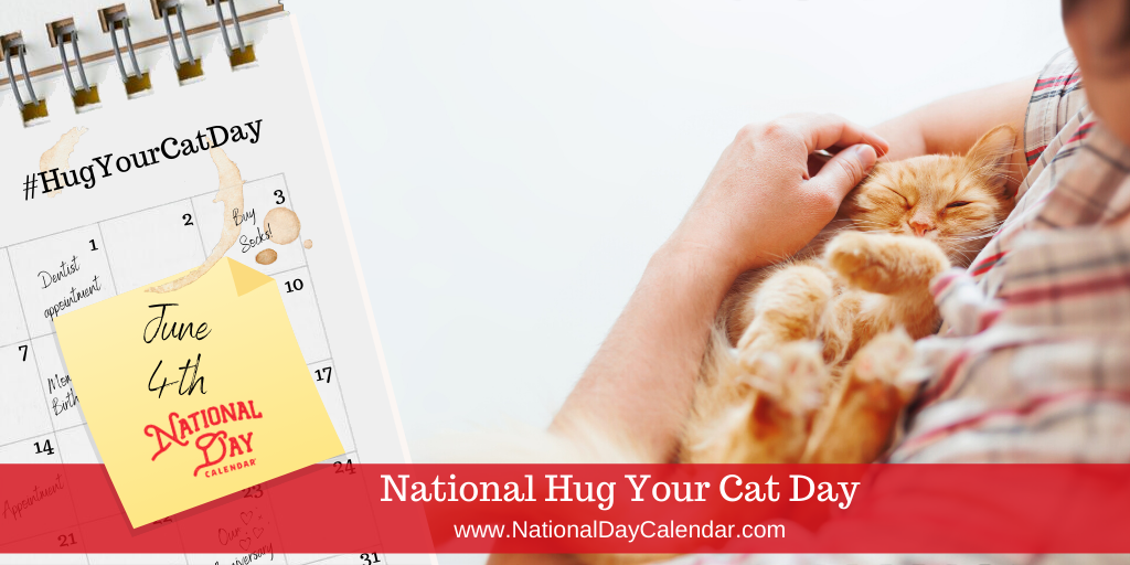 National Hug Your Cat Day - June 4