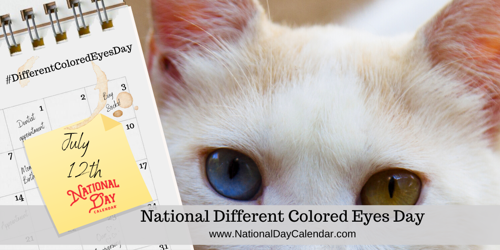 NATIONAL DIFFERENT COLORED EYES DAY - July 12