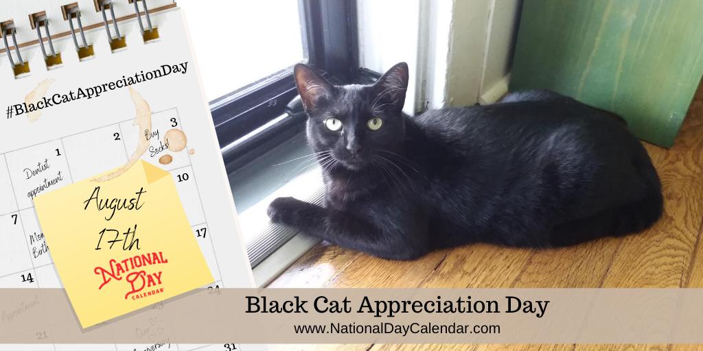 BLACK CAT APPRECIATION DAY - August 17