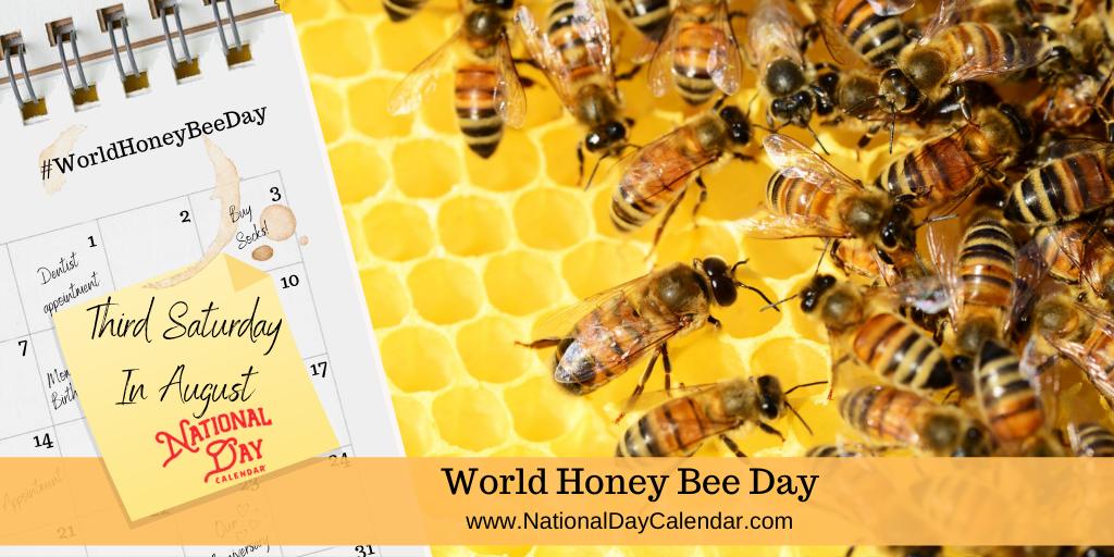 WORLD HONEY BEE DAY – Third Saturday in August