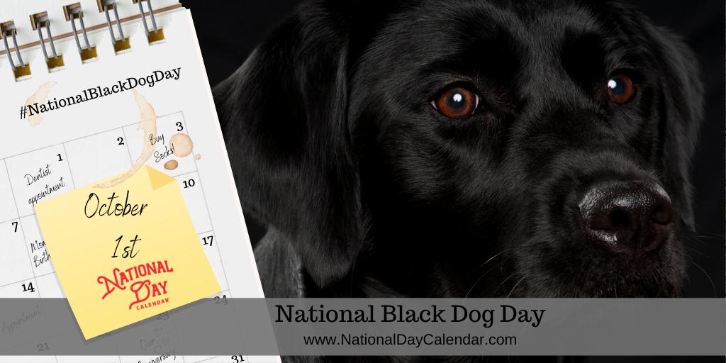 NATIONAL BLACK DOG DAY - October 1