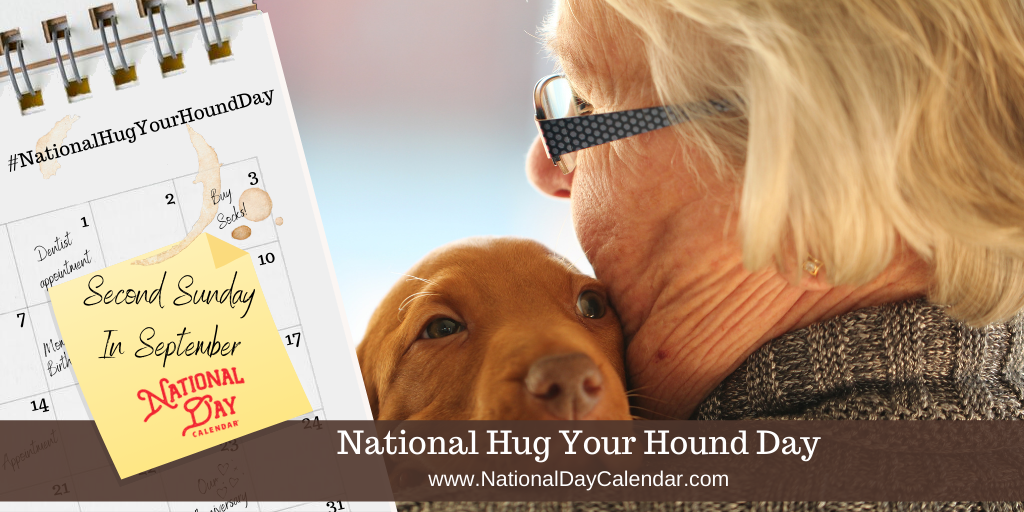 NATIONAL HUG YOUR HOUND DAY – Second Sunday in September (1)