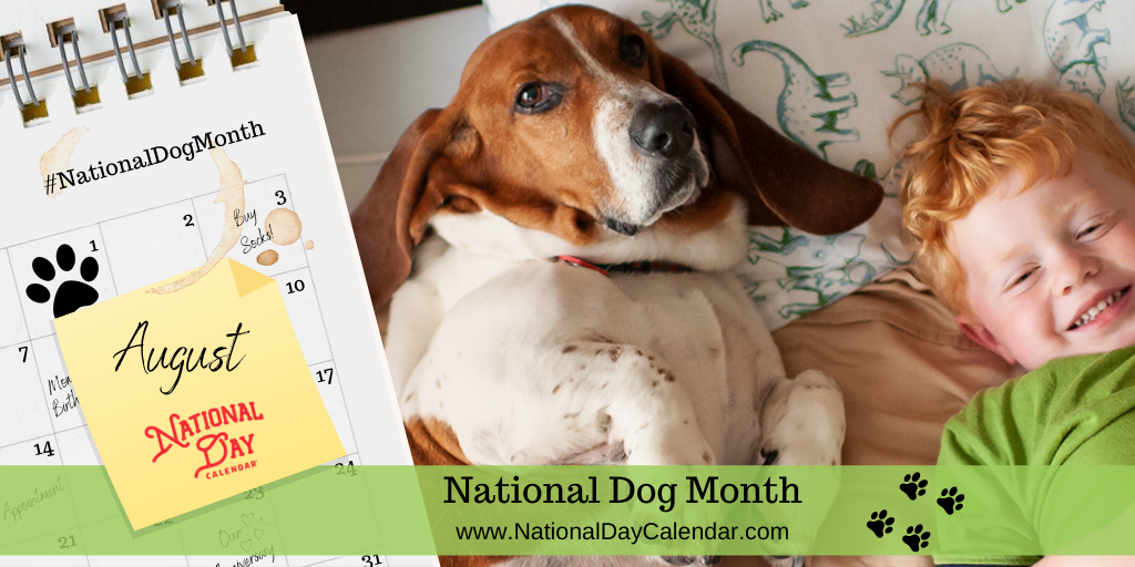National Dog Month - August