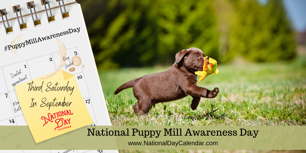 PUPPY MILL AWARENESS DAY – Third Saturday in September (1)