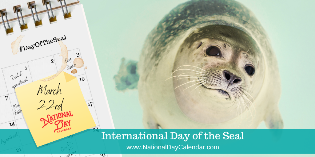 International Day of the Seal - March 22