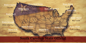 South-Carolina-State-Official