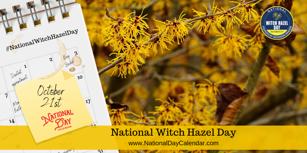 National Witch Hazel Day - October 21st