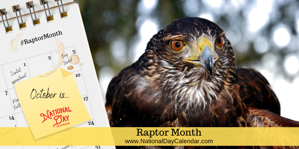 Raptor Month - October